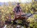British Columbia Moose Hunting - Nanikalakeoutfitters.com