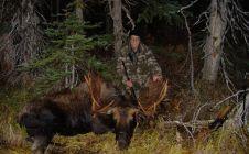 British Columbia Nanika Lake Bull Moose - Nanikalakeoutfitters.com