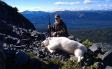 British Columbia Goat Hunting - Nanikalakeoutfitters.com