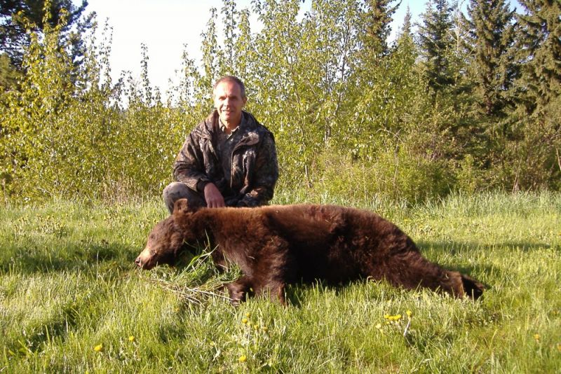 Trophy Color Phase Black Bear hunts British Columbia - Nanikalakeoutfitters.com
