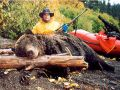 BC Guided Grizzly Bear Hunts - Nanikalakeoutfitters.com