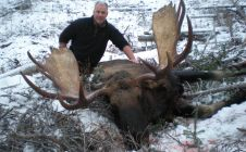 British Columbia Trophy Moose Hunts - Nanikalakeoutfitters.com