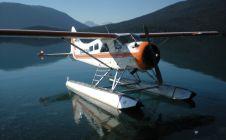 Beaver Floatplane - Nanikalakeoutfitters.com