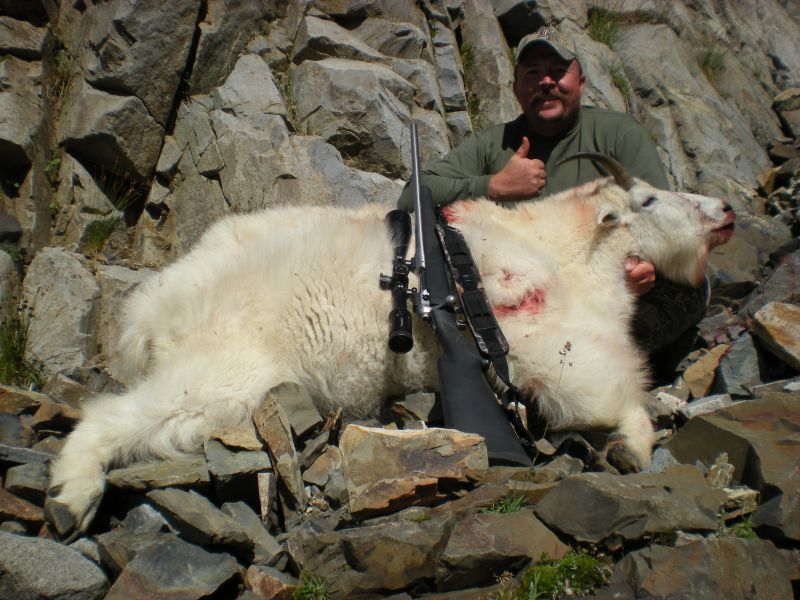 British Columbia Guided Goat Hunts - Nanikalakeoutfitters.com