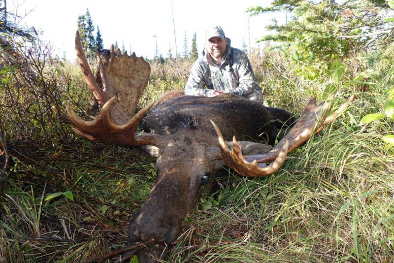 Monster BC Canadian  Moose Hunts - Nanikalakeoutfitters.com