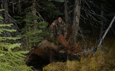 World Class Moose Hunting - Nanikalakeoutfitters.com